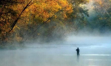 Trout Fishing in Missouri: Where and When to Take Advantage of This State's Great Fisheries