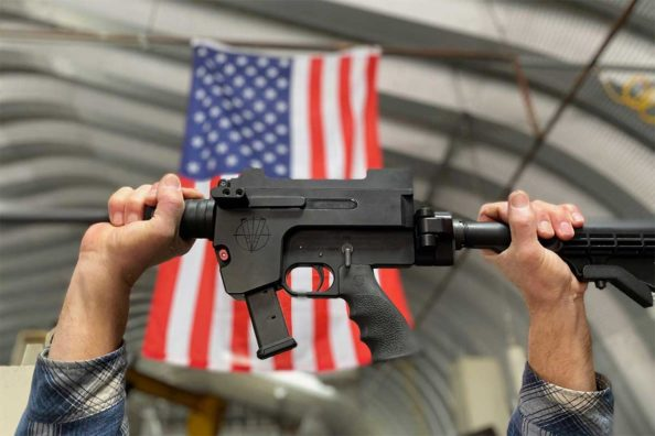 Vigilance Rifles: What's Unique About This Emerging Gun Brand?