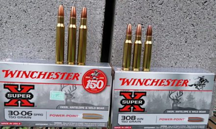 .308 vs .30-06: Which Round is Better, and for What Uses?
