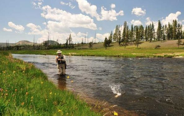 15 Best Fishing Vests of 2021 for Fly Fishing and Kayak Fishing