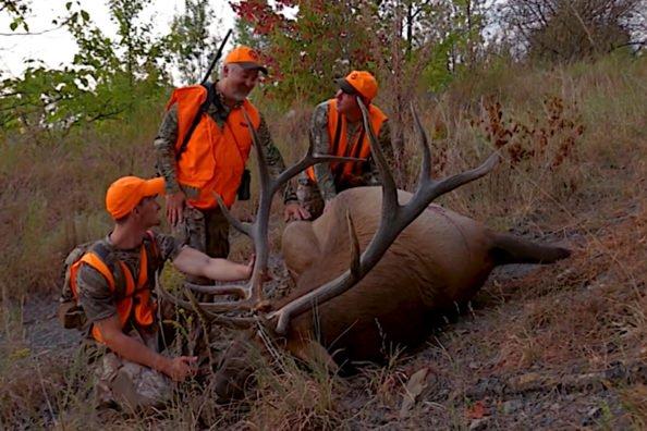 Kentucky Elk Hunting