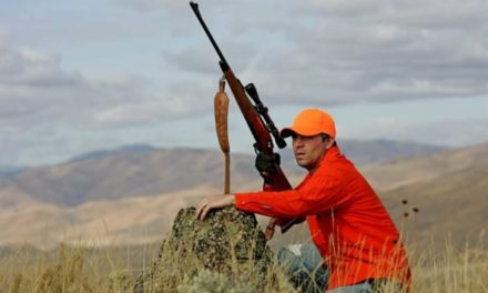 5 Ways to Have a Good Deer Season (Even If You Don't Kill One)
